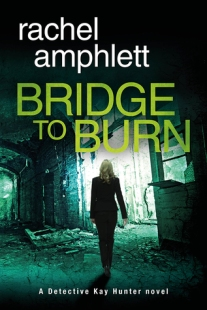 bridge to burn