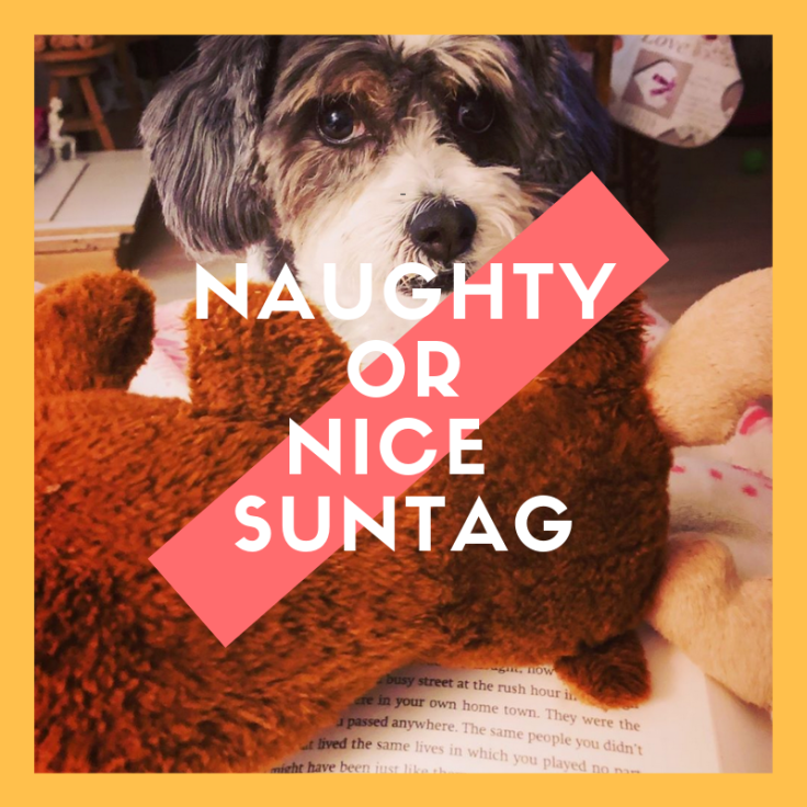 nice or naughty