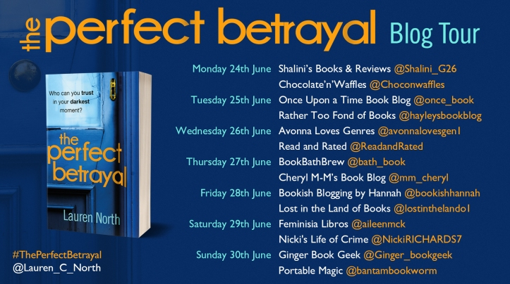 Perfect Betrayal Blog Tour poster for PB.jpg