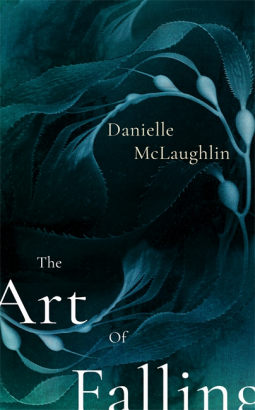 cover204854-medium